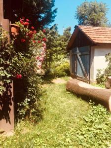 A garden outside Rózsakert Panzió