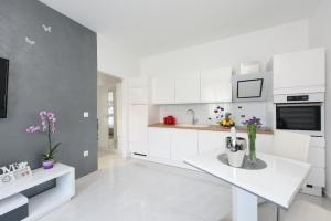 A kitchen or kitchenette at Apartment Lant