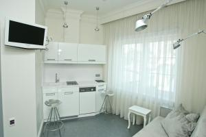 A kitchen or kitchenette at Boutique Hotel Mama