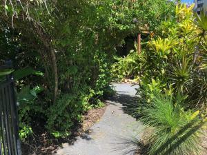 A garden outside Five 3 Five