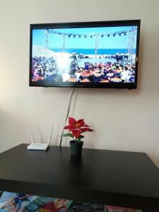 Телевизор и/или развлекательный центр в Апартаменты на ул. Ленина