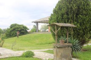 A garden outside lavillaparking