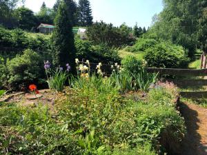 Ein Garten an der Unterkunft Pension Raststüb'l