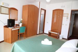 TV a/nebo společenská místnost v ubytování Hotel Berna