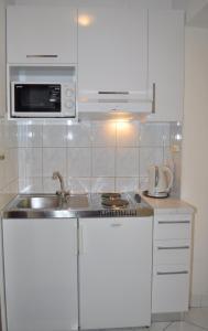 Kuchyňa alebo kuchynka v ubytovaní Apartments Ljubica