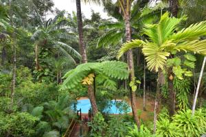 A view of the pool at Wait A While Daintree or nearby