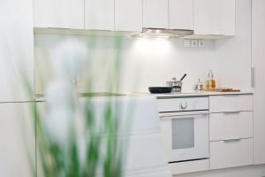 A kitchen or kitchenette at Apartments Hiša Pod Gradom