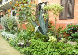 Сад в Central Apartment Miraflores