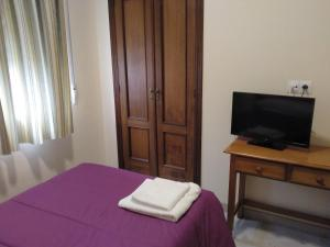 A television and/or entertainment center at Hostal Orly