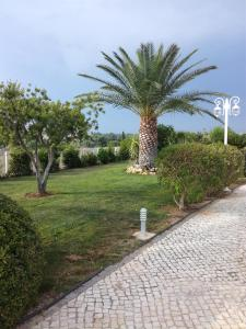 A garden outside Moradia Dematos