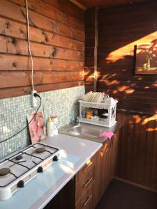 A kitchen or kitchenette at Guest House Darina