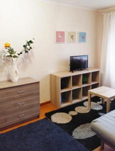 Телевизор и/или развлекательный центр в Аппартаменты у Алатыря