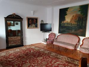 A television and/or entertainment center at Santino Apartment