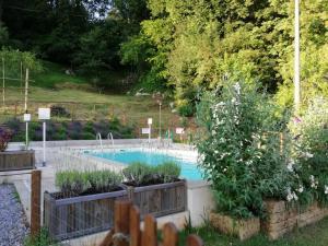 Vista sulla piscina di Alle Vignole o su una piscina nei dintorni