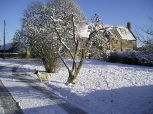 Seymours Court during the winter