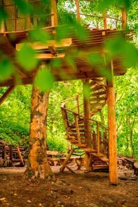 Zahrada ubytování Treehouse pod Jestedem