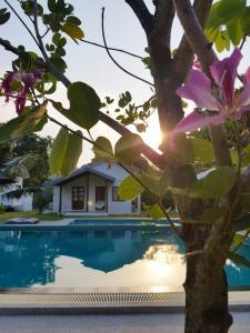 The swimming pool at or near Silan Residence Koh Phangan