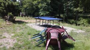 Tischtennis in der Unterkunft Pension Pod Kaštany Srbská Kamenice oder in der Nähe