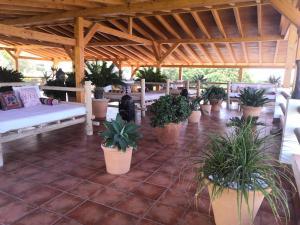Piscina en o cerca de Hostal Casa Arco Iris (Playa)