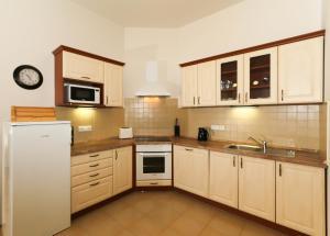 Kuchyň nebo kuchyňský kout v ubytování Vinohrady Apartments Na Kozacce