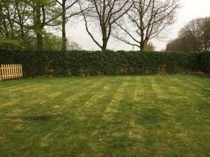 A garden outside B&B Maison Saint Tropez Eindhoven