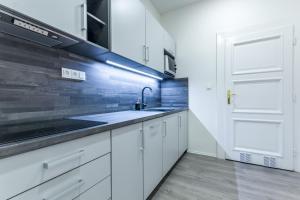 Kuchyň nebo kuchyňský kout v ubytování Apartments Susilova