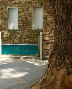 The swimming pool at or close to The Neem Tree