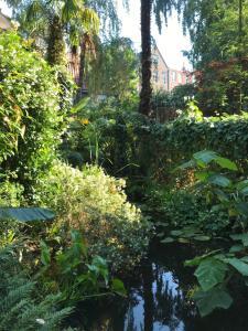A garden outside Garden Suite Centre