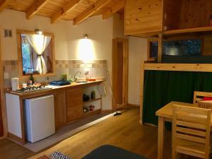 Una cocina o kitchenette en Cozy mountain cabin