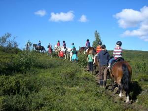 Paardrijden bij het hotel of in de buurt