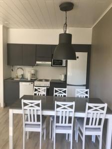 A kitchen or kitchenette at Paljakka Villas