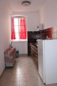 Кухня или мини-кухня в Dudić apartmani