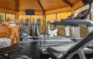 The fitness centre and/or fitness facilities at Rustic Inn Creekside