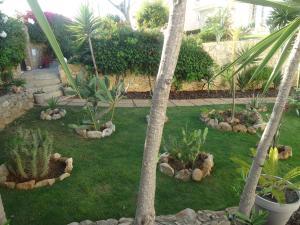 A garden outside VIVENDA L'OLIVIER