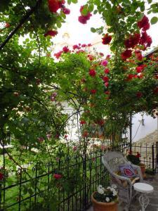 A garden outside Residenza Dutzu-Boutique Hotel