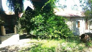 A garden outside Quinta De Abol De Baixo