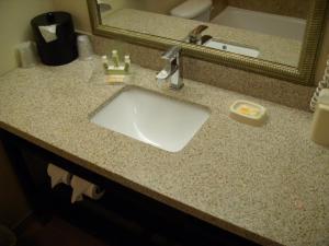 A bathroom at Holiday Inn Dover-Downtown, an IHG Hotel