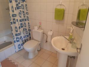 Vonios kambarys apgyvendinimo įstaigoje Rugelis