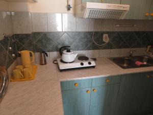 Kuchyň nebo kuchyňský kout v ubytování Kővirág Apartman