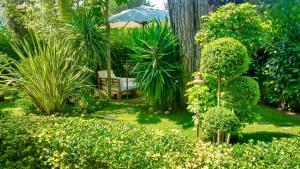 A garden outside Relais Casa Moresca