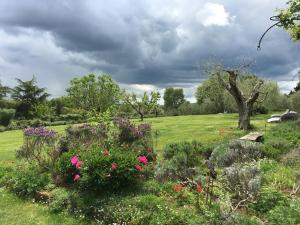 A garden outside Locanda Ilune