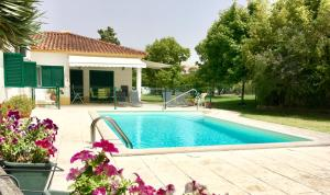 The swimming pool at or near Vitoria's House