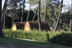 Um jardim no exterior de Camping Oleiros