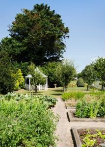 A garden outside Beachcombers Hotel