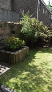 A garden outside Edinburgh House Hotel
