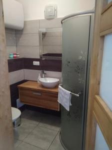 Koupelna v ubytování Dvůr v Borovné