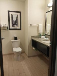 A bathroom at Holiday Inn Express & Suites Golden, an IHG Hotel