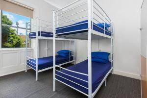 A bunk bed or bunk beds in a room at Nate's Place Backpackers Sydney