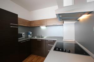 Кухня или мини-кухня в Aparthotel Angel