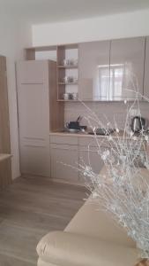 Kuchyň nebo kuchyňský kout v ubytování M&C Apartmans